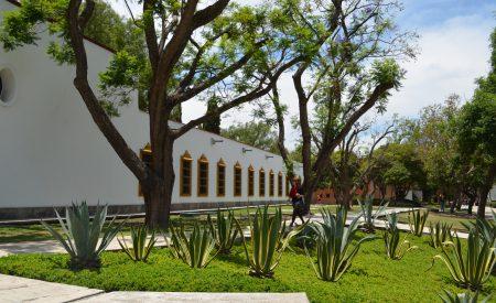 El turismo de inmersión como vía alternativa para impulsar el desarrollo económico de pequeñas poblaciones en México