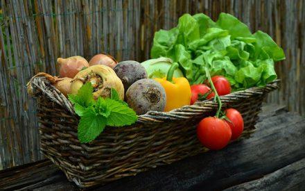 No solo de alimentos nos nutrimos