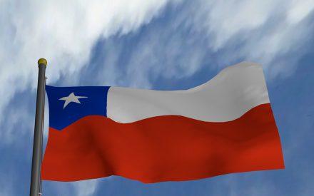 Determinantes de la inversión en Chile, 1990-2013