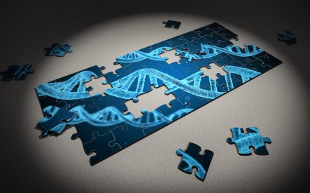Propagación de genes de resistencia a los antibióticos: lo que pasa en Las Vegas, ¿se queda en Las Vegas?