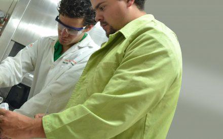 Producción de biodiesel y estimación del valor nutricional del residuo generado a partir de una especie de Jatropha comestible Mexicana