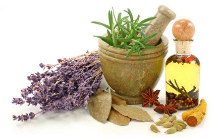 Plantas medicinales: fuente natural de medicamentos