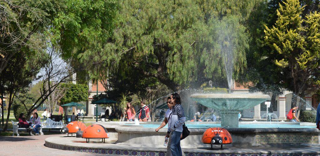 Seguridad hídrica y adaptación al cambio climático: el reto de la calidad del agua