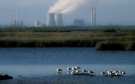 Tratamiento de efluentes industriales mediante generación electroquímica de peróxido de hidrógeno usando un cátodo rcv en un reactor de plato paralelo