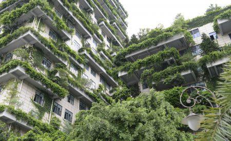 Más allá de la sustentabilidad