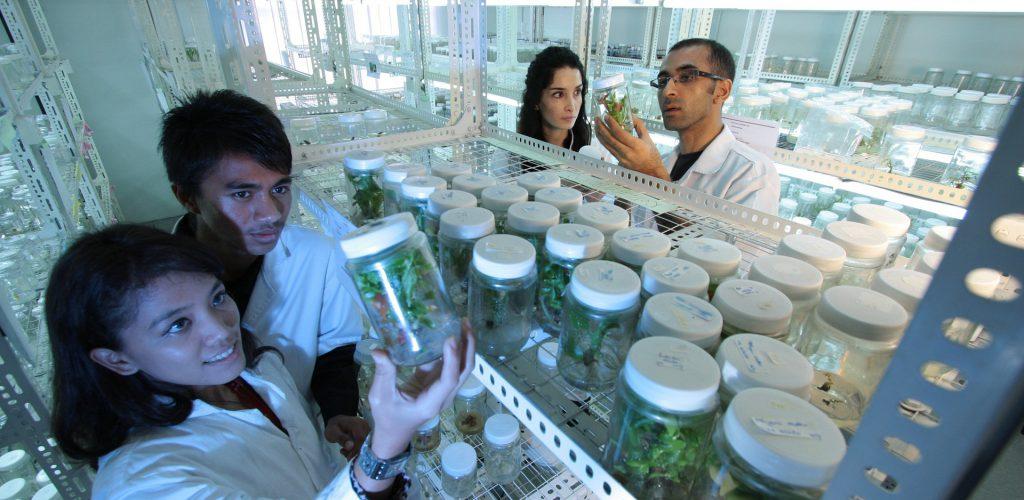 La importancia de la investigación en las universidades