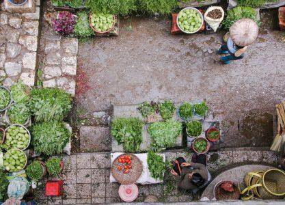 Mercado en el Estado de Oaxaca