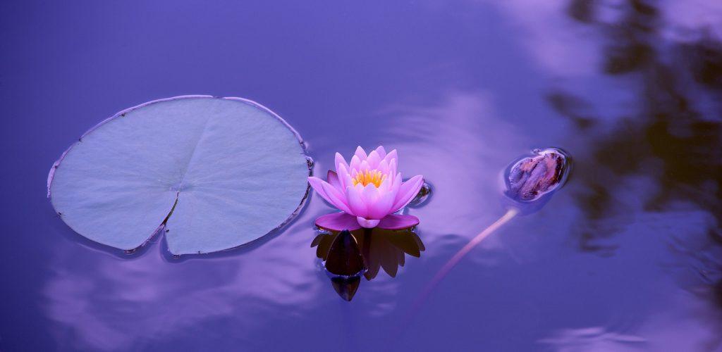 Bienestar espiritual como factor de calidad de vida en adulto de 30 a 50 años con cáncer