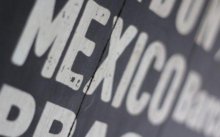 El sector social de la economía en México, alternativa de desarrollo local