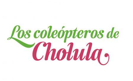 Los coleópteros de Cholula