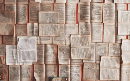 Lengua mundial y lenguas dominadas