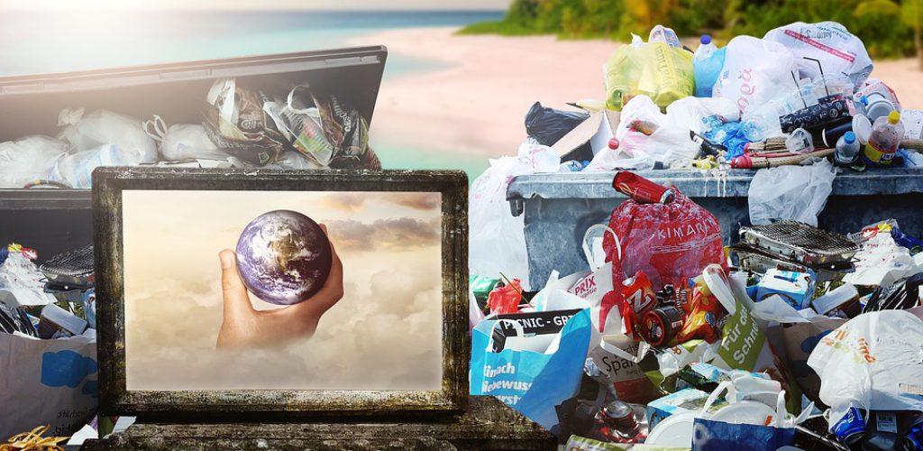 Biopolímeros ¿El futuro del plástico?