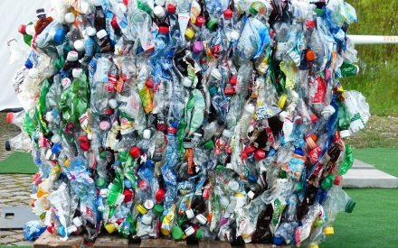 Nanocristales de celulosa: ¿la solución contra el plástico?