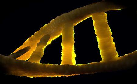 Ingeniería Genética y Nanotecnología.