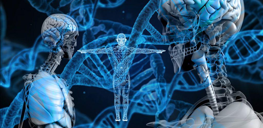 ¿Existe la biología cuántica?