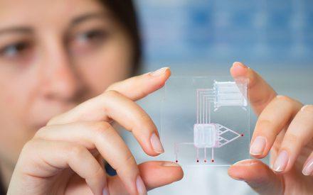 ¿Por qué los nanotecnólogos hacemos las cosas a una escala tan pequeña?