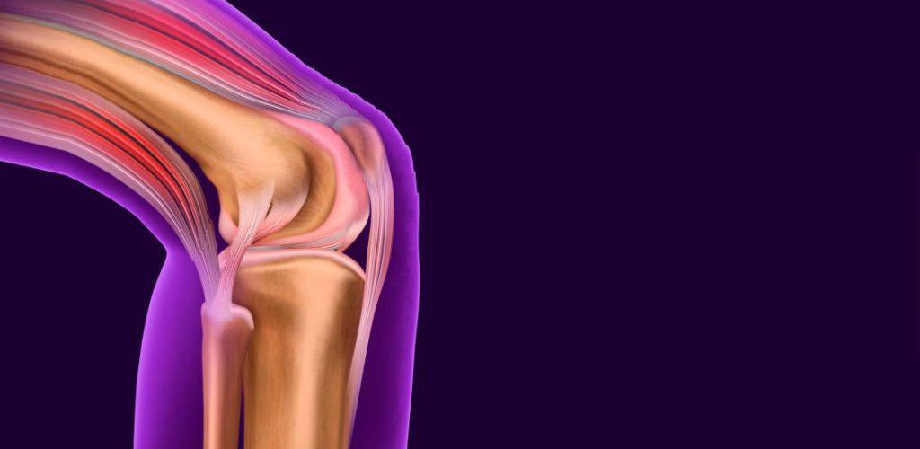 Suturas bio-absorbibles: un novedoso desarrollo en la reparación quirúrgica de tejido tendinoso