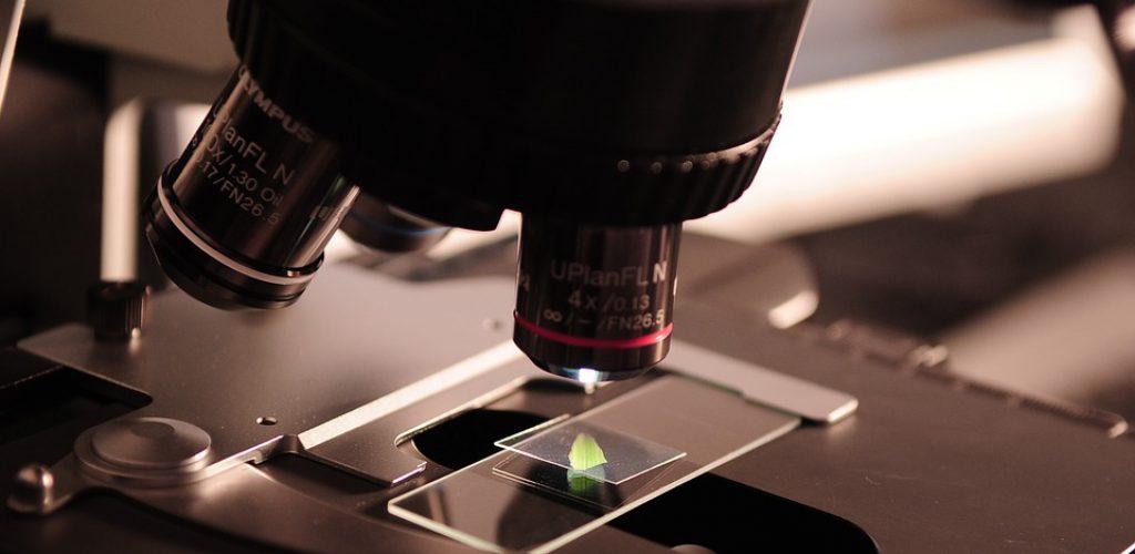 Biocatálisis y Nanotecnología